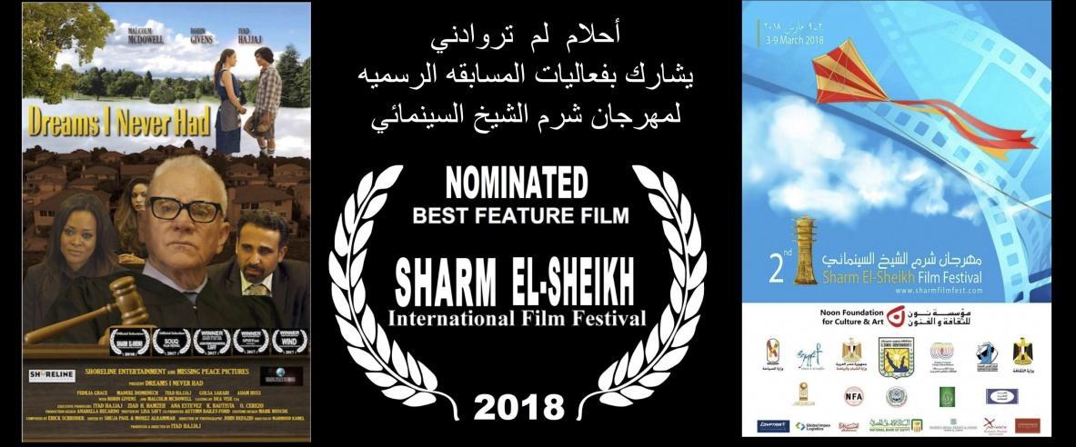 الفيلم الفلسطيني الأمريكي