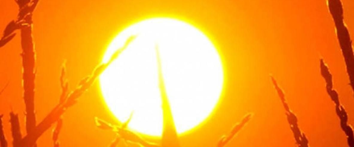 اجواء حارة حتى يوم الخميس