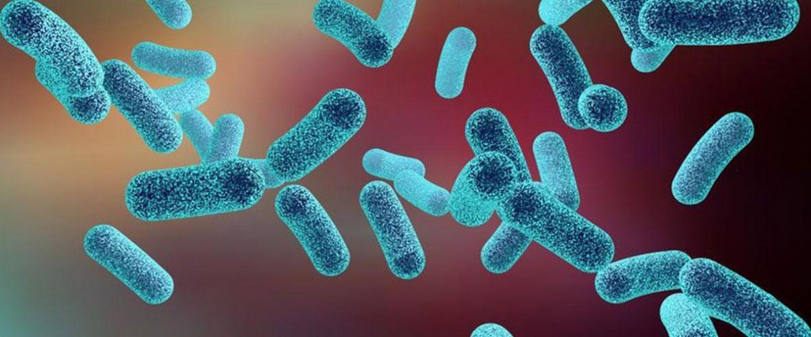 عدوى بكتيرية قد تسبب سرطان القولون والمستقيم