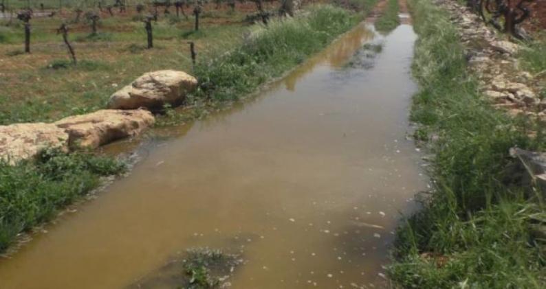 مستوطنون يغرقون أراضي زراعية بالمياه العادمة جنوب غرب بيت لحم