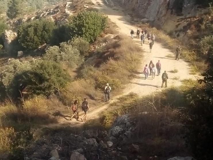 مستوطنون يشقون طريقا وينصبون بركسات جنوب بيت لحم